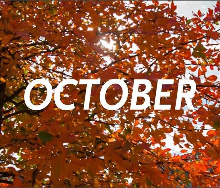 Fall leaves on tree in background with white letters spelling out October in the front